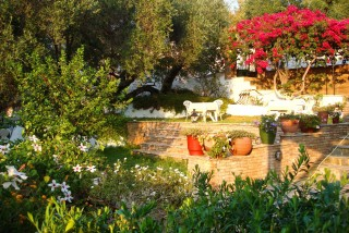 pension-gerania-kefalonia-007