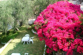 pension-gerania-kefalonia2